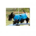 Zentek Coats - Straight Back Climate Control Coat – Small Dogs