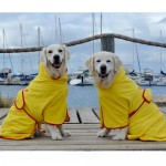 Surf Dog Australia - Dog Beach and Bath Robes