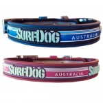 Surf Dog Australian Waterproof Stay Dry Collar
