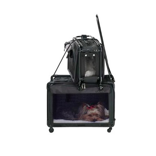 Airline Approved Pet Carrier Tutto Pet On Wheels