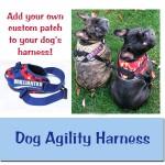 Dog Agility Harness
