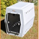large dog double door crate
