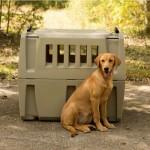 Gunner Dog Crates