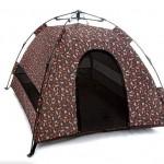 brown-dog-tent