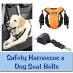 Dog Car Harnesses & Seat Belts
