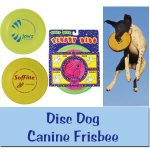 Disc Dog / Canine Frisbee