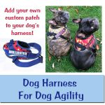 Dog Agility Harness