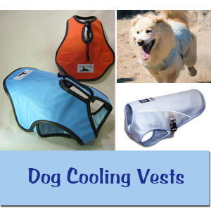 Dog Cooling Coats