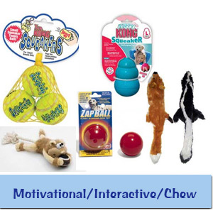 Motivational - Interactive - Chew