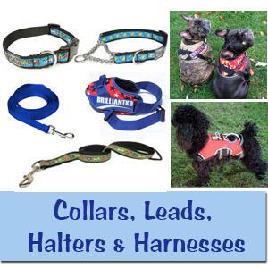 Collars / Leads / Halters & Harnesses