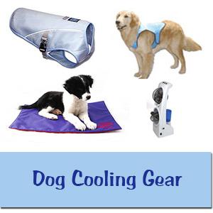 Dog Cooling