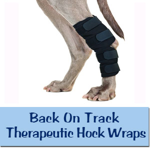 Back On Track Therapeutic Hock Wraps